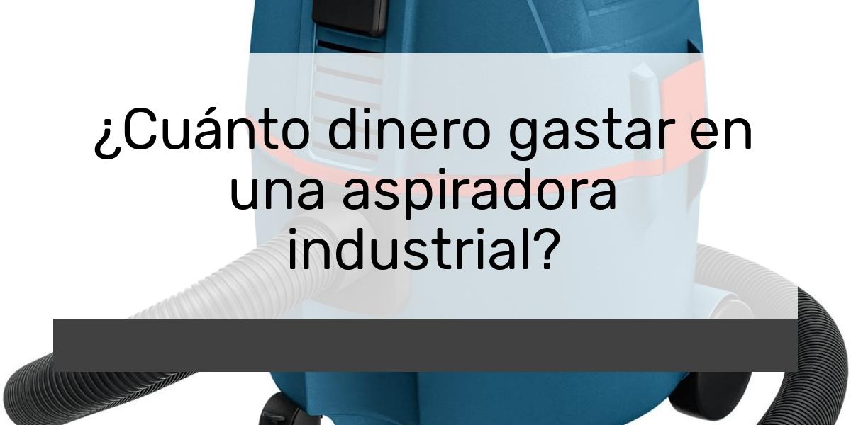 ¿Cuánto dinero gastar en una aspiradora industrial?