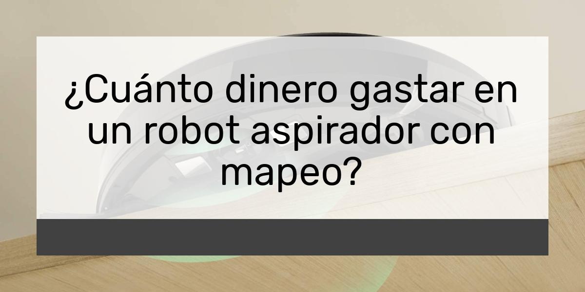 ¿Cuánto dinero gastar en un robot aspirador con mapeo?