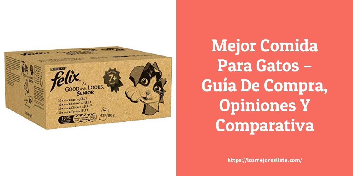 Mejor Comida Para Gatos – Guía De Compra, Opiniones Y Comparativa
