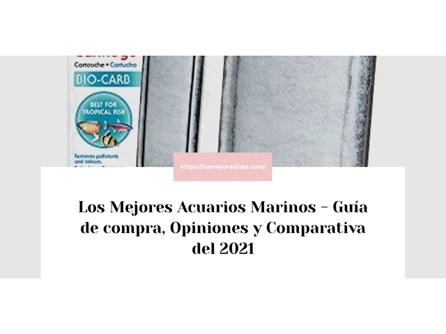 Los Mejores Acuarios Marinos – Guía de compra, Opiniones y Comparativa del 2021 (España)