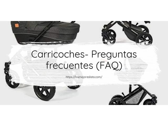 Los Mejores Carricoches – Guía de compra, Opiniones y Comparativa del 2021 (España)