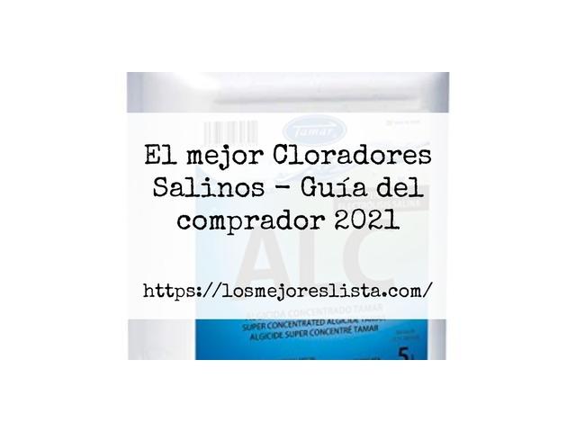 Los Mejores Cloradores Salinos – Guía de compra, Opiniones y Comparativa del 2021 (España)