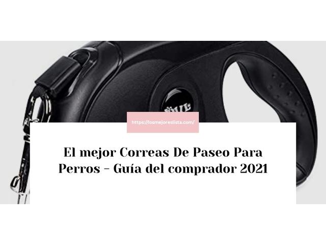 Los Mejores Correas De Paseo Para Perros – Guía de compra, Opiniones y Comparativa del 2021 (España)