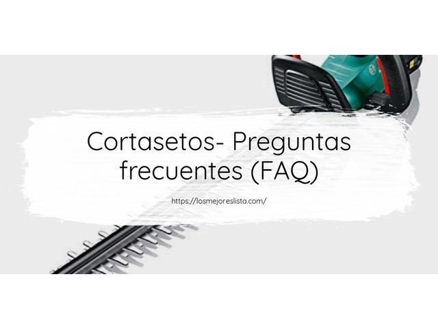 Los Mejores Cortasetos – Guía de compra, Opiniones y Comparativa del 2021 (España)