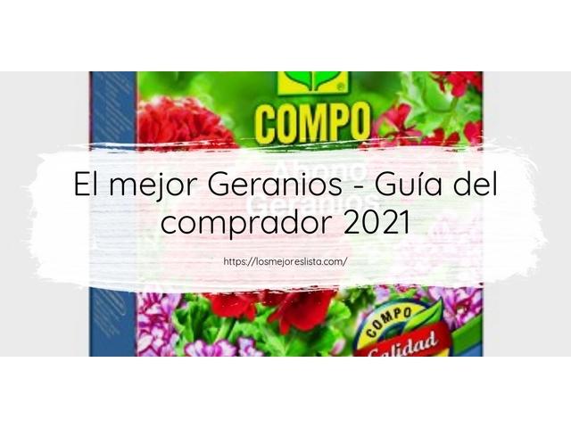 Los Mejores Geranios – Guía de compra, Opiniones y Comparativa del 2021 (España)