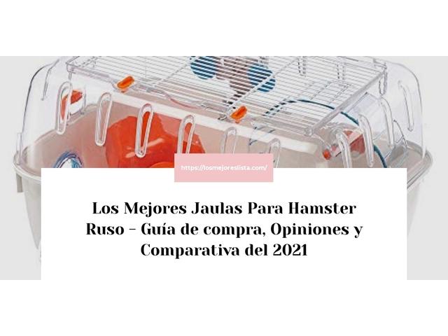 Los Mejores Jaulas Para Hamster Ruso – Guía de compra, Opiniones y Comparativa del 2021 (España)