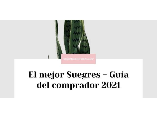 Los Mejores Suegres – Guía de compra, Opiniones y Comparativa del 2021 (España)