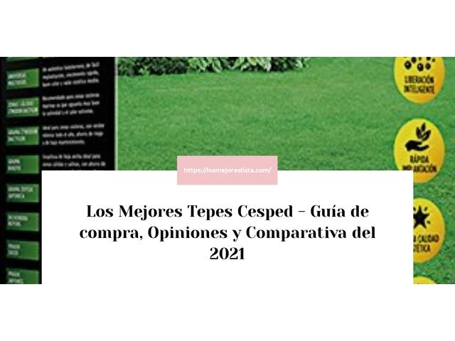 Los Mejores Tepes Cesped – Guía de compra, Opiniones y Comparativa del 2021 (España)