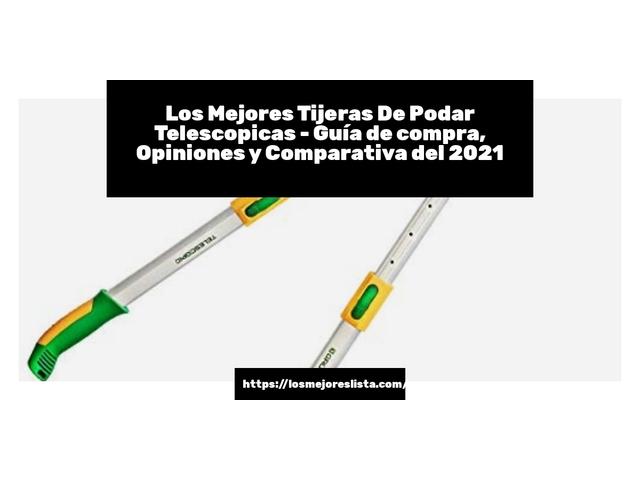 Los Mejores Tijeras De Podar Telescopicas – Guía de compra, Opiniones y Comparativa del 2021 (España)