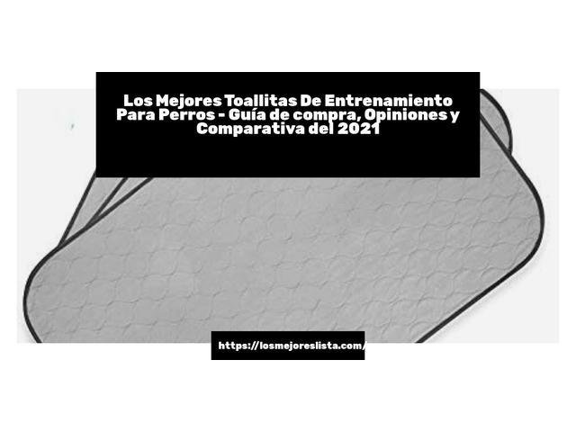 Los Mejores Toallitas De Entrenamiento Para Perros – Guía de compra, Opiniones y Comparativa del 2021 (España)